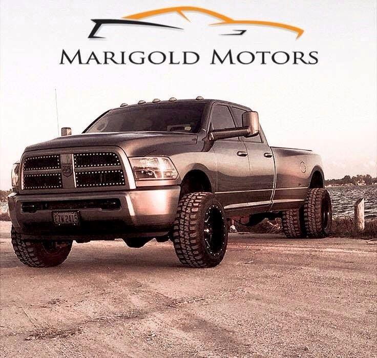 Marigold Motors, LLC