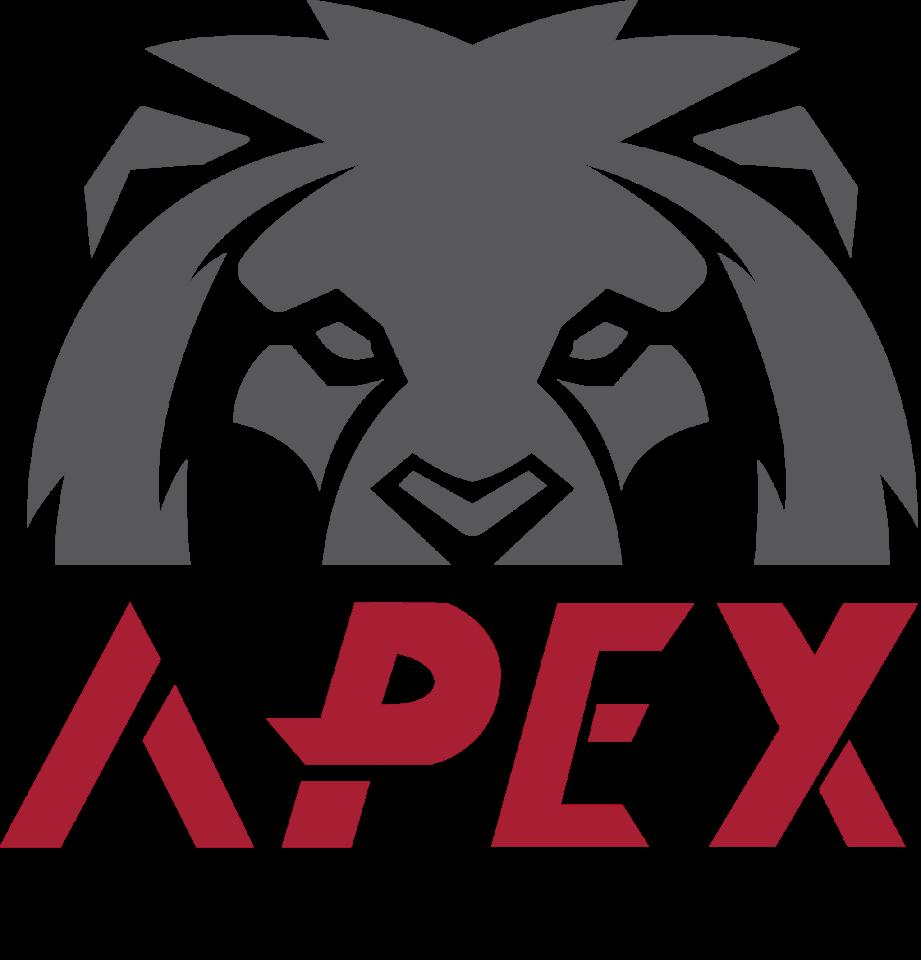 Apex Auto SA